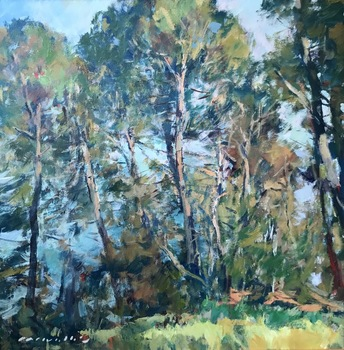 "Charles Movalli - ""Monterey Pines"" - Acrylic on canvas - 30"" x 30"""